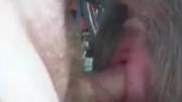 Мужик зоофил кончил в пизду ишака зоо порно видео онлайн