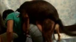 Dog porn любовница с большой красивой попкой перепихнулась с догом