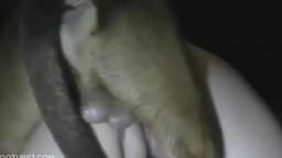 Кобелек вогнал свой хер шлюшке по самые яичка